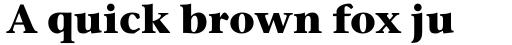 ITC Stone Serif Std Bold sample