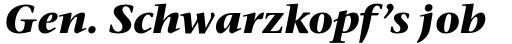 ITC Stone Serif Std Bold Italic sample