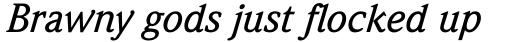 Weidemann Pro Medium Italic sample