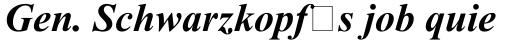 Times New Roman Tur Bold Italic sample