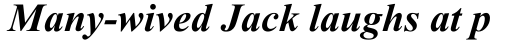 Times New Roman CE Bold Italic sample