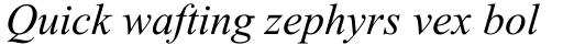 Times New Roman CE Italic sample