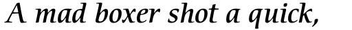ITC Cerigo Medium Italic sample