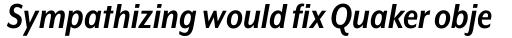 Mr Eaves XL Modern Nar Bold Italic sample