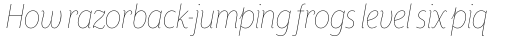 Mr Eaves XL Sans Nar Thin Italic sample