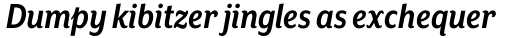 Mr Eaves XL Sans Nar Bold Italic sample
