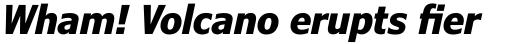 Verdana Pro Condensed Bold Italic sample