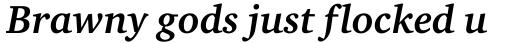 Charter Bold Italic OS sample