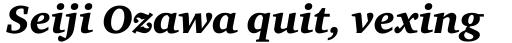Charter Black Italic sample