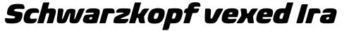 Biome Pro Black Italic sample