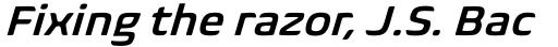 Biome Pro SemiBold Italic sample