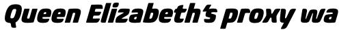 Biome Pro Narrow Black Italic sample