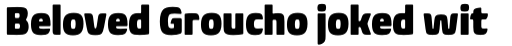 Biome Pro Narrow Black sample