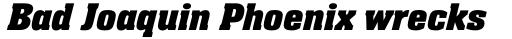 Neue Aachen Std Bold Italic sample