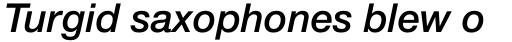 Helvetica Neue Pro Medium Italic sample