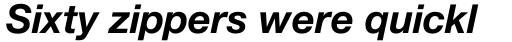 Helvetica Neue Pro Bold Italic sample