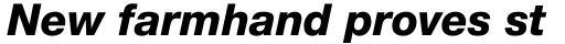 Helvetica Neue Pro Heavy Italic sample