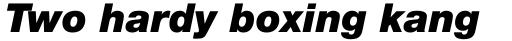Helvetica Neue Pro Black Italic sample