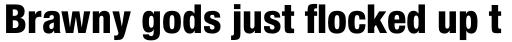 Helvetica Neue Pro Cond Heavy sample