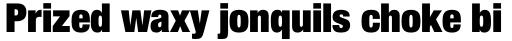 Helvetica Neue Pro Cond ExtraBlack sample