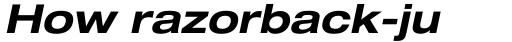 Helvetica Neue Pro Extd Bold Oblique sample