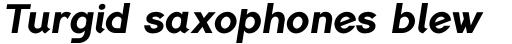 PF Lindemann Sans ExtraBold Italic sample