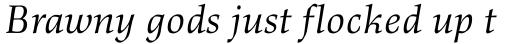 Richler Italic sample