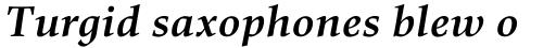 Richler Cyrillic Bold Italic sample