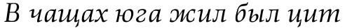 Richler Cyrillic Italic sample