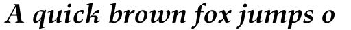 Richler Pro Bold Italic sample