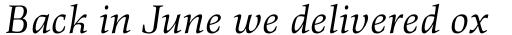 Richler Pro Italic sample