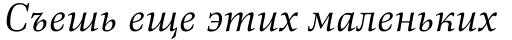 Richler Pro Cyrillic Italic sample