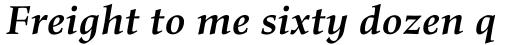 Richler Pro Cyrillic Bold Italic sample