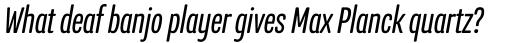 Program Narrow OT Italic sample