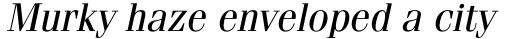 ITC Fenice Oblique sample