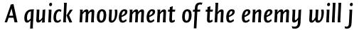 FF Quadraat Sans OT Condensed DemiBold Italic sample