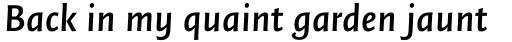 FF Quadraat Sans OT DemiBold Italic sample