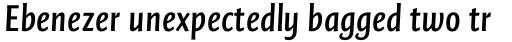 FF Quadraat Sans Pro Condensed DemiBold Italic sample