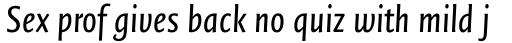 FF Quadraat Sans Pro Condensed Italic sample