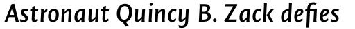 FF Quadraat Sans Pro DemiBold Italic sample