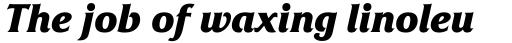 Friz Quadrata OS Bold Italic sample