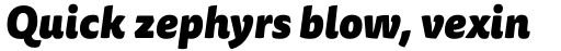 FF Tisa Sans Pro Black Italic sample