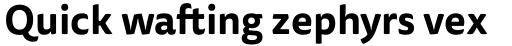 FF Tisa Sans OT Bold sample
