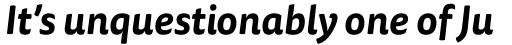 FF Tisa Sans OT Bold Italic sample