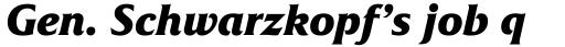 Friz Quadrata Bold Italic sample