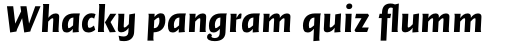 FF Quadraat Sans OT Black Italic sample