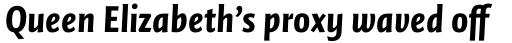 FF Quadraat Sans Pro Condensed Black Italic sample