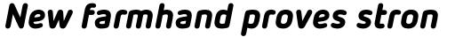 FF Netto Pro Black Italic sample