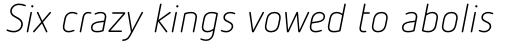 FF Netto Pro Light Italic sample