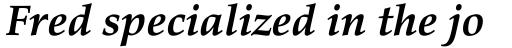 Palatino eText Bold Italic sample